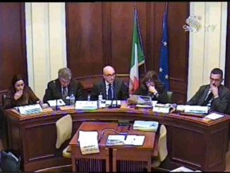 Audizione Senato del DAC